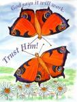 Butterflies Mag JPEG