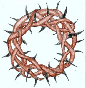 Crown of Thorns 4Web