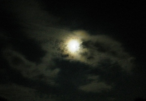 Midnight moon