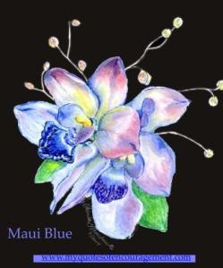 Maui Blue 4 web